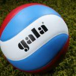 Мячи волейбольные GALA